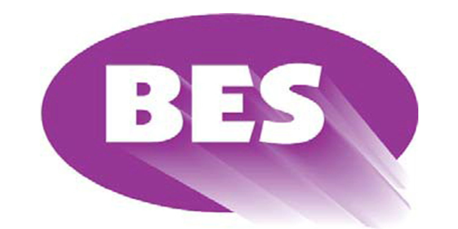 BES Electrical Wholesale Ltd