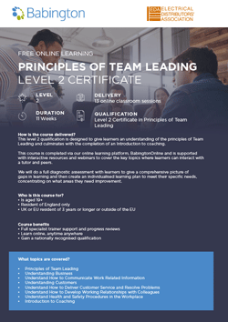 Principles of Team Leading Level 2